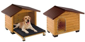 Σπίτια Σκύλων
