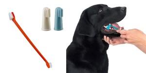 οδοντόβουρτσα για σκύλους