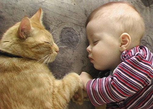 μωράκι με γάτα κοιμούνται