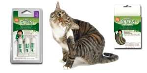 Αντιπαρασιτικά για γάτες